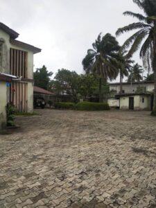 Photo from Akanbi Damola (13)