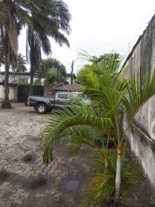 Photo from Akanbi Damola (7)